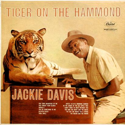 jackie-davis-tiger-1000