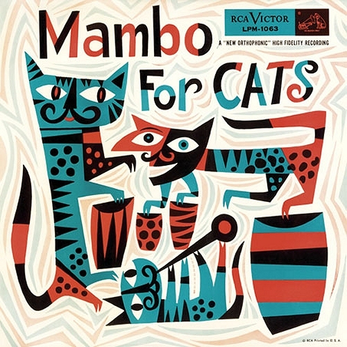 Mambo For Cats