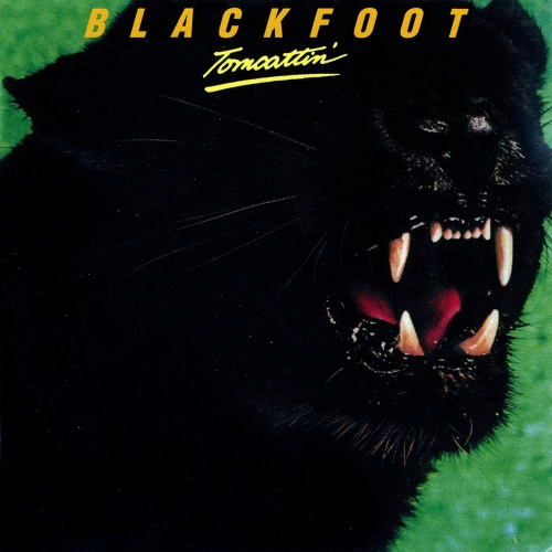 Blackfoot Tomcattin' LP Album Cover with Cat Panther on Cover