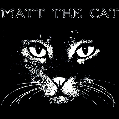 Matt The Cat LP Cover Matthew Larkin Cassell