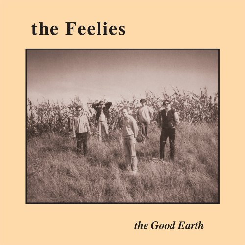 the feelies the good earth get LP on Vinyl Record Album Reissues at What Cheer in Providence