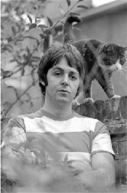 Paul McCartney of the Beatles with Cat