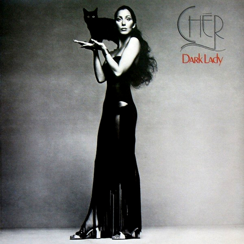 Cher Dark Lady lp record album cover with black cat artwork