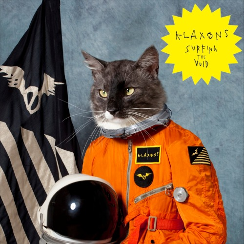 the Klaxons Surfing the Void album cover with Cat photo artwork