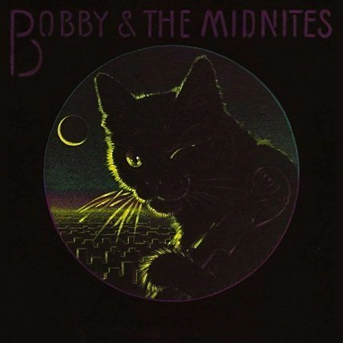 bobby and the midnites lp record with cat cover artwork