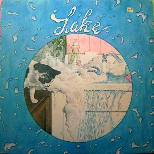 lake record album cover with cat artwork art